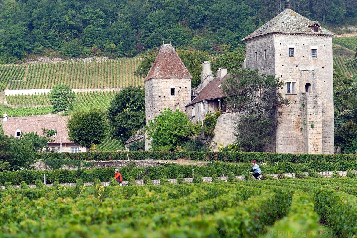 Château-de-Gevrey-Chambertin- Photo Alain-Doire